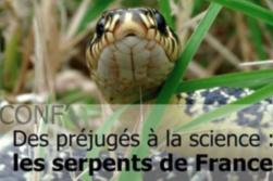 conf-serpent
